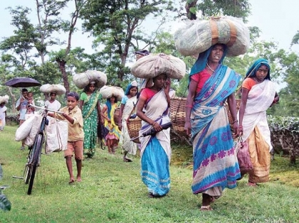 REACT IMMEDIATELY AGAINST SUPREME COURT ORDER FOR FORCED EVICTION OF TRIBALS