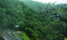 KERALA: CONSERVATION UNDER ATTACK IN THE WESTERN GHATS